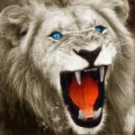 Profile picture of LIONz